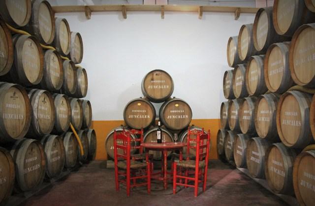 Enoturismo en Andalucia - DO Condado de Huelva
