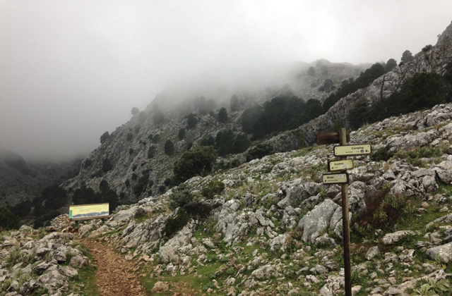 Grazalema hiking trails - LLANOS DEL ENDRINAL