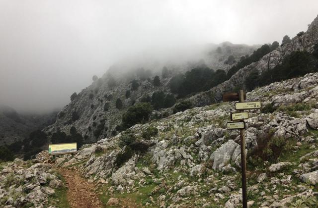 Rutas de senderismo en Grazalema - LLANOS DEL ENDRINAL