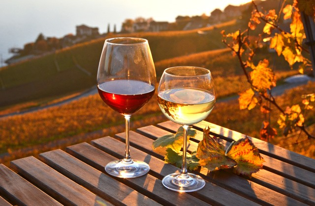 Enoturismo en Andalucia - Rutas del vino