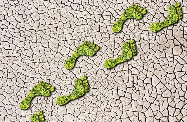 Erreichtes Ziel: Verringerung der CO2 - Bilanz um 9,72 %