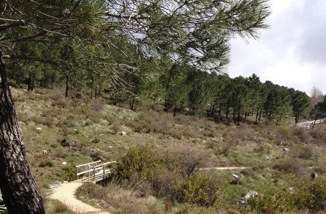 Rutas de senderismo en Grazalema - LOS CHARCONES
