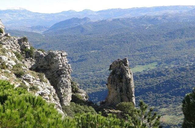 Rutas de senderismo en Grazalema - PUERTO DE LAS PALOMAS CERRO COROS