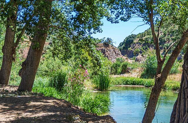 Ruta de senderismo -Ribera del Guadiaro