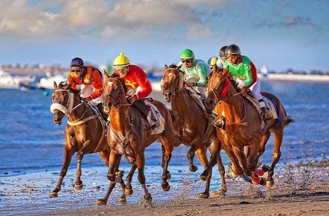 Fiestas Andaluzas que no puedes perderte - Carrera de caballos en Sanlúcar