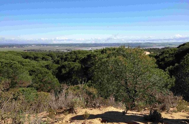 Randonnée en Andalousie - SENDERO SEÑALIZADO ARROYO MONDRAGÓN