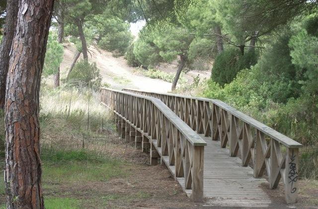 Rutas de senderismo en Andalucia - SENDERO SEÑALIZADO LAGUNA DEL PORTIL