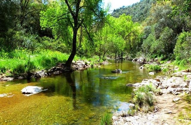 Las maravillas naturales de Andalucía - Parque Natural Sierra deHornachuelos