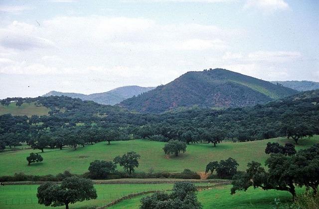 Las maravillas naturales de Andalucía - Parque Natural Sierra de Aracena y Pico de Aroche