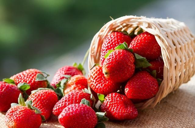 Las fresas de Huelva + Variedades y tipos de fresas