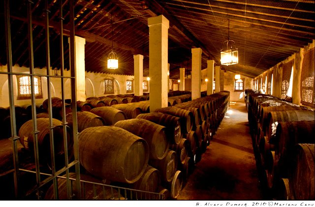 Jerez wineries - Álvaro Domecq-