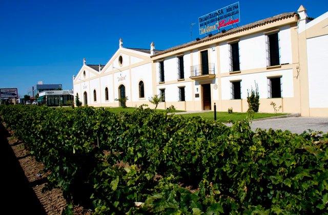 Sanlúcar de Barrameda wineries - Bodegas Delgado Zuleta