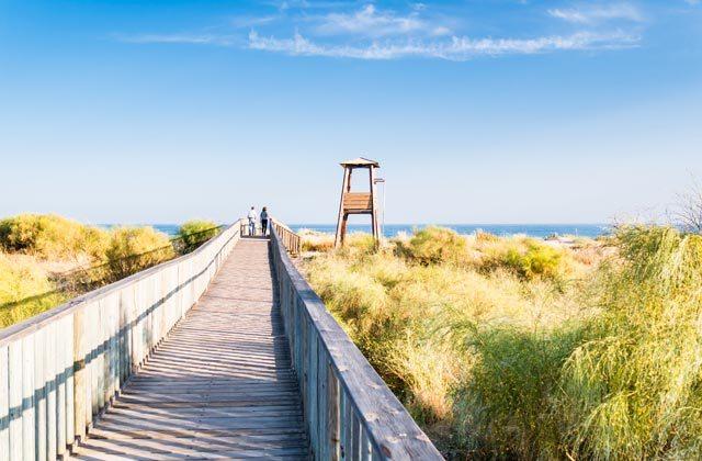 Playa en otoño - naturaleza