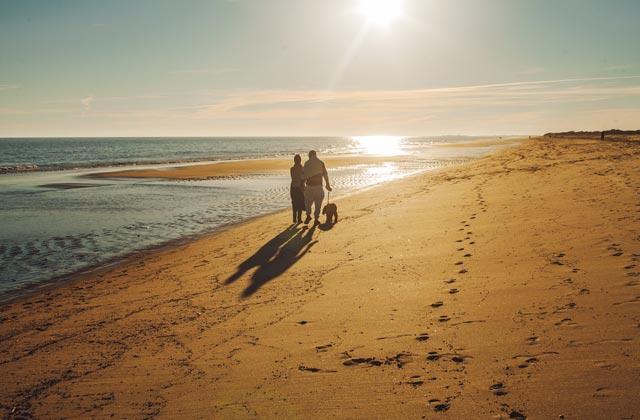 Playa en otoño - paseo arena