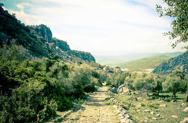 Things to do and see in Sierra de Grazalema - Roman road
