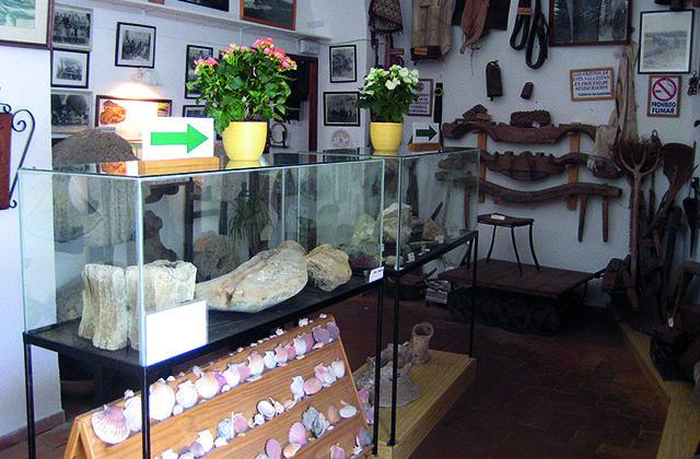 que hacer en Conil de la Frontera - Museo Raices Conileñas