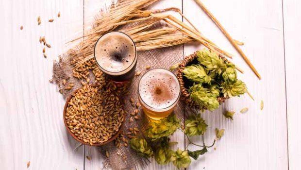 Cerveza, Beer Andalucia