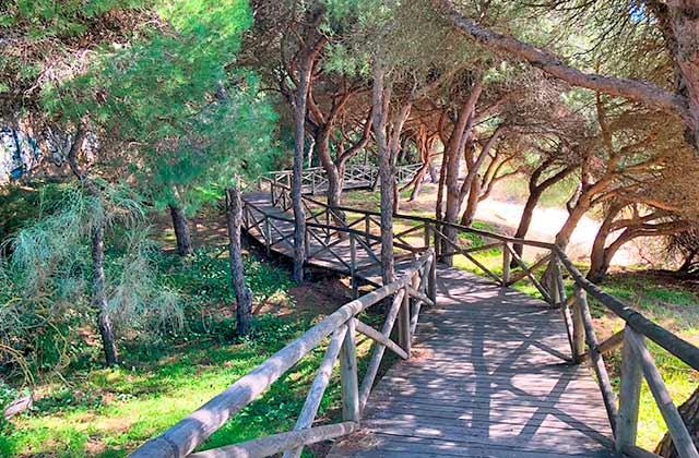 Ruta Laguna del Portil