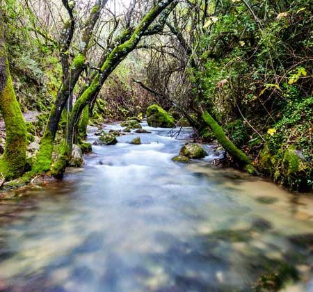 Río Majaceite