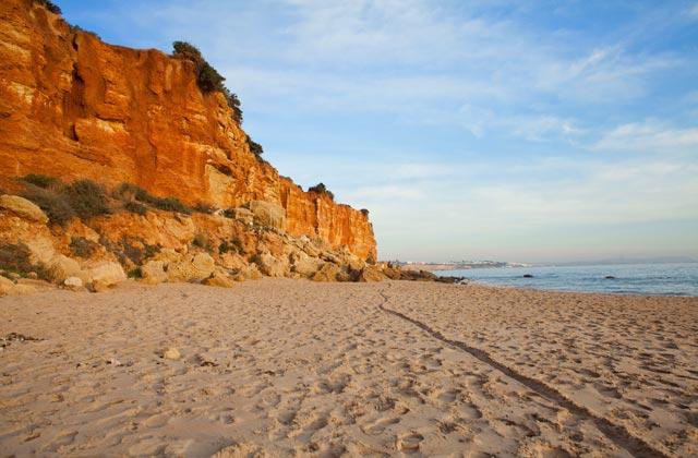 playas de Conil - Cala del Aceite Conil