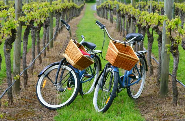 enociclismo en la campiña gaditana