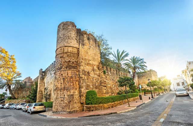 La Muraille arabe
