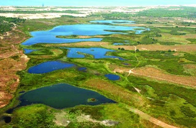 Panorámica de Doñana. Foto: El Correo.
