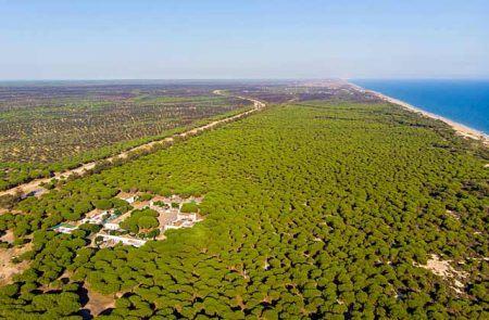 Parque Nacional de Doñana