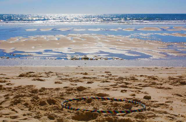 Doñana beaches