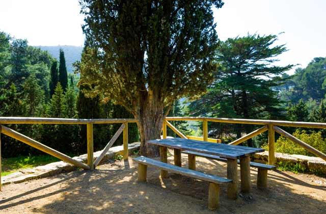 Bois de l'Andalousie - Montes de Málaga
