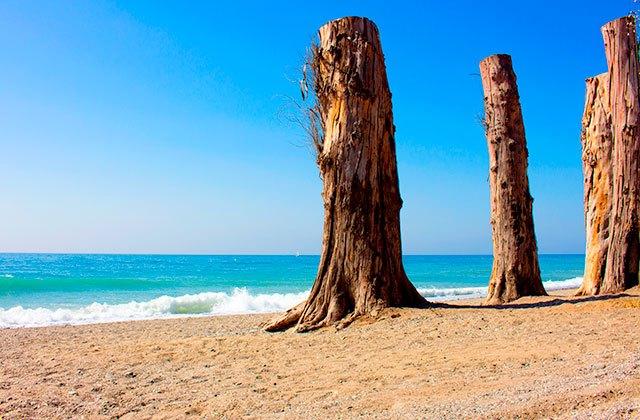 Playa de San Pedro, Marbella