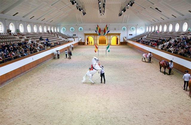 Real Escuela Andaluza del Arte Ecuestre - foto juntadeandalucia.es