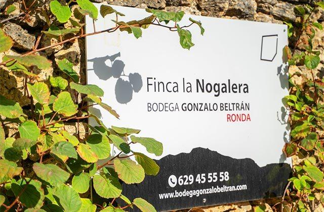 Bodega Gonzalo Beltrán Finca La Nogalera